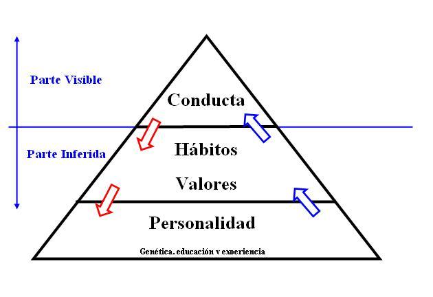 pirámide conducta